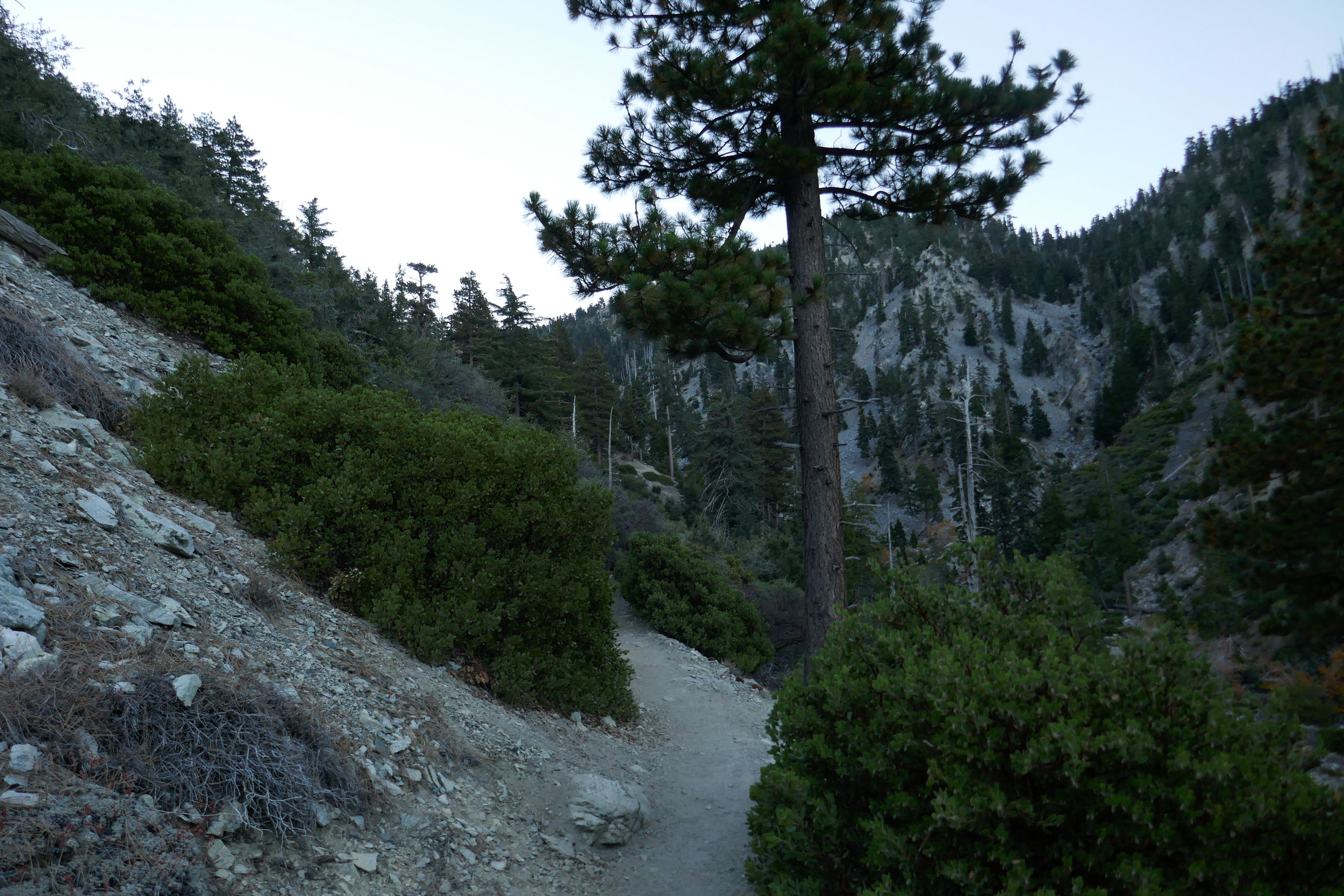 After the rocky trek through the canyon we arrived at the switchbacks.