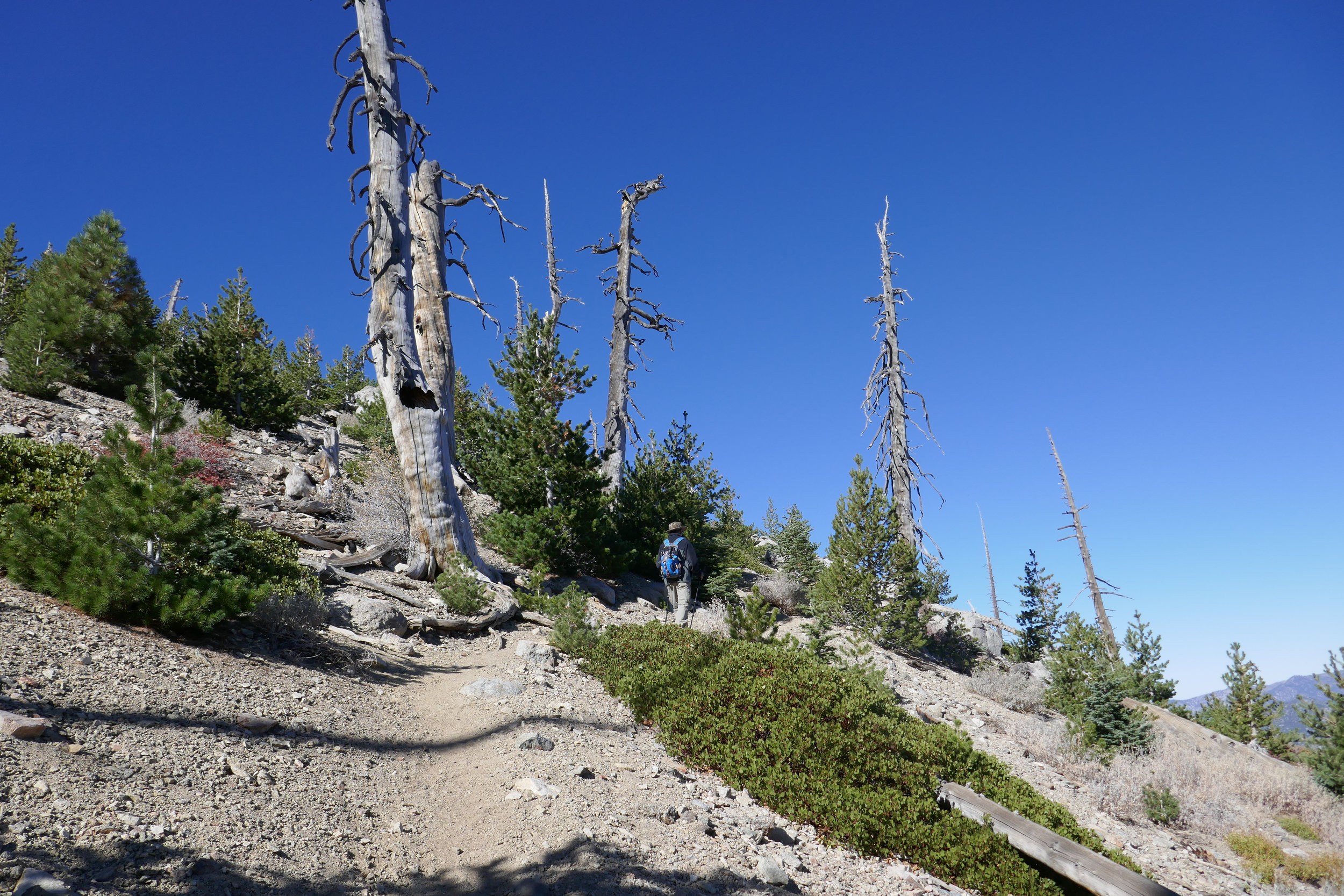 The push to the summit goes through a series of switchbacks. It's a slow but steady climb with breath taking views.