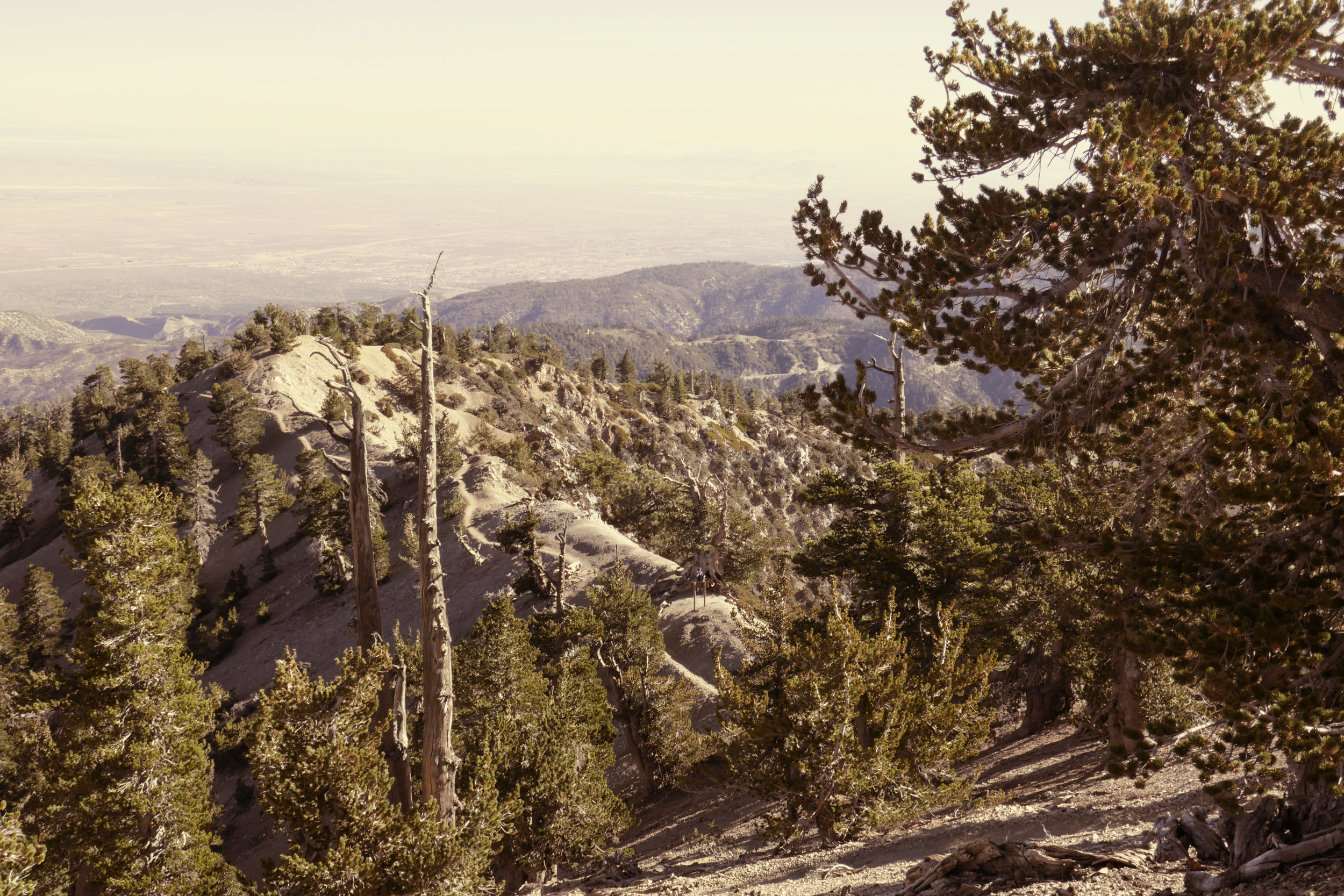 Closer view of the ridge.