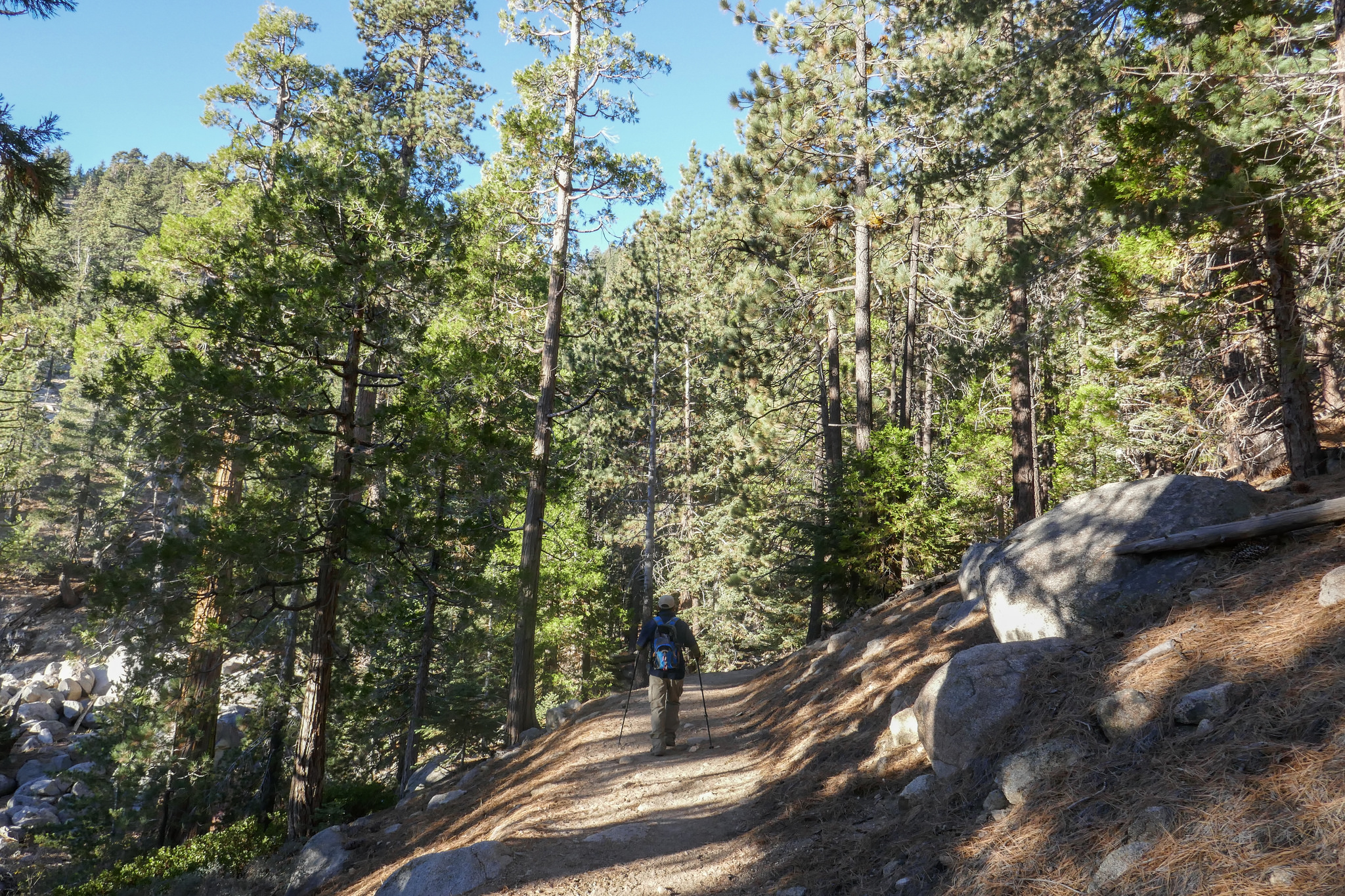 The Waterman Mountain trail is a beautiful stretch of trail. It's shaded and full of fragrant Jeffrey pines.