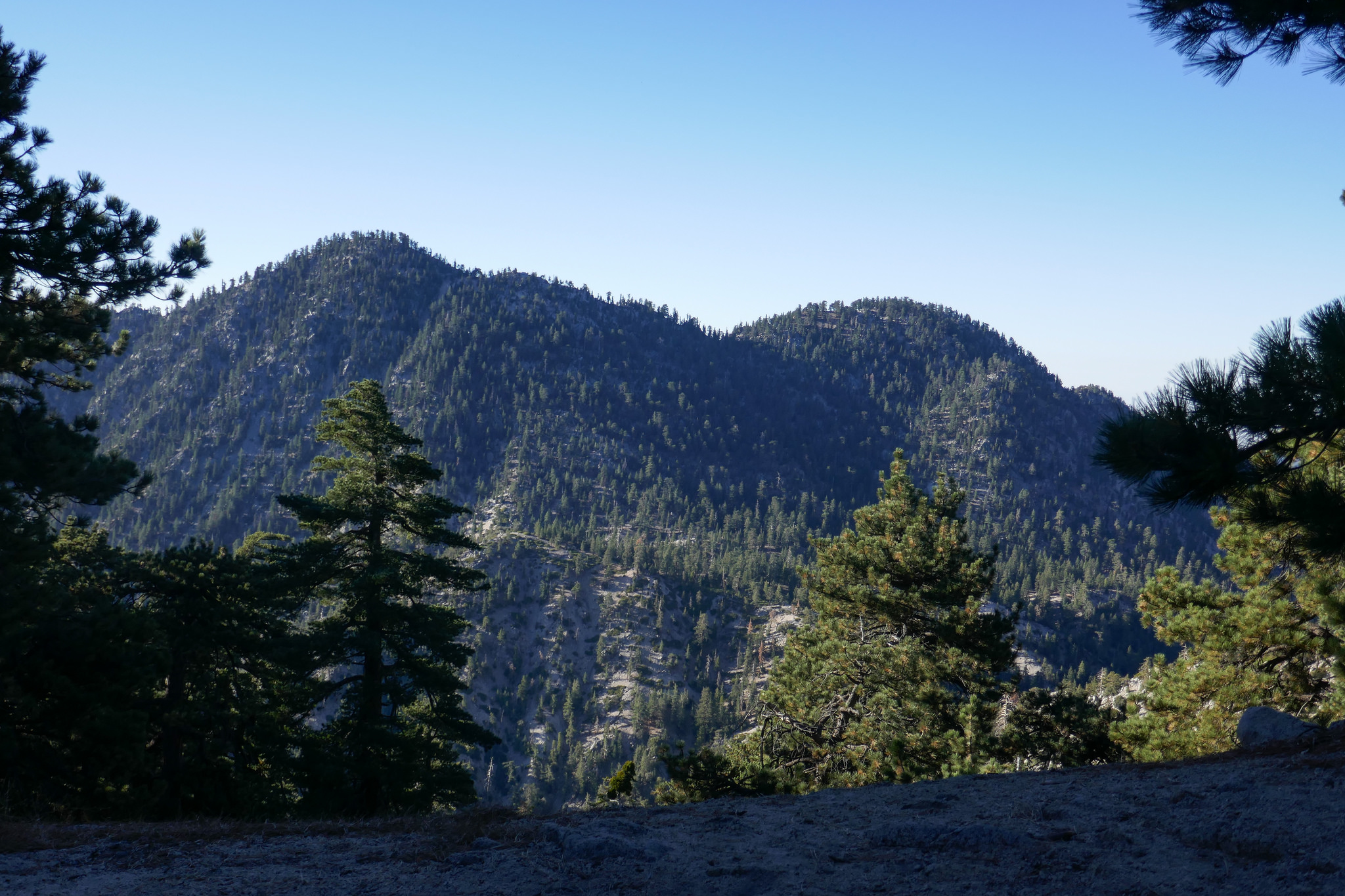 Looking out at the San Gabriel Wilderness.