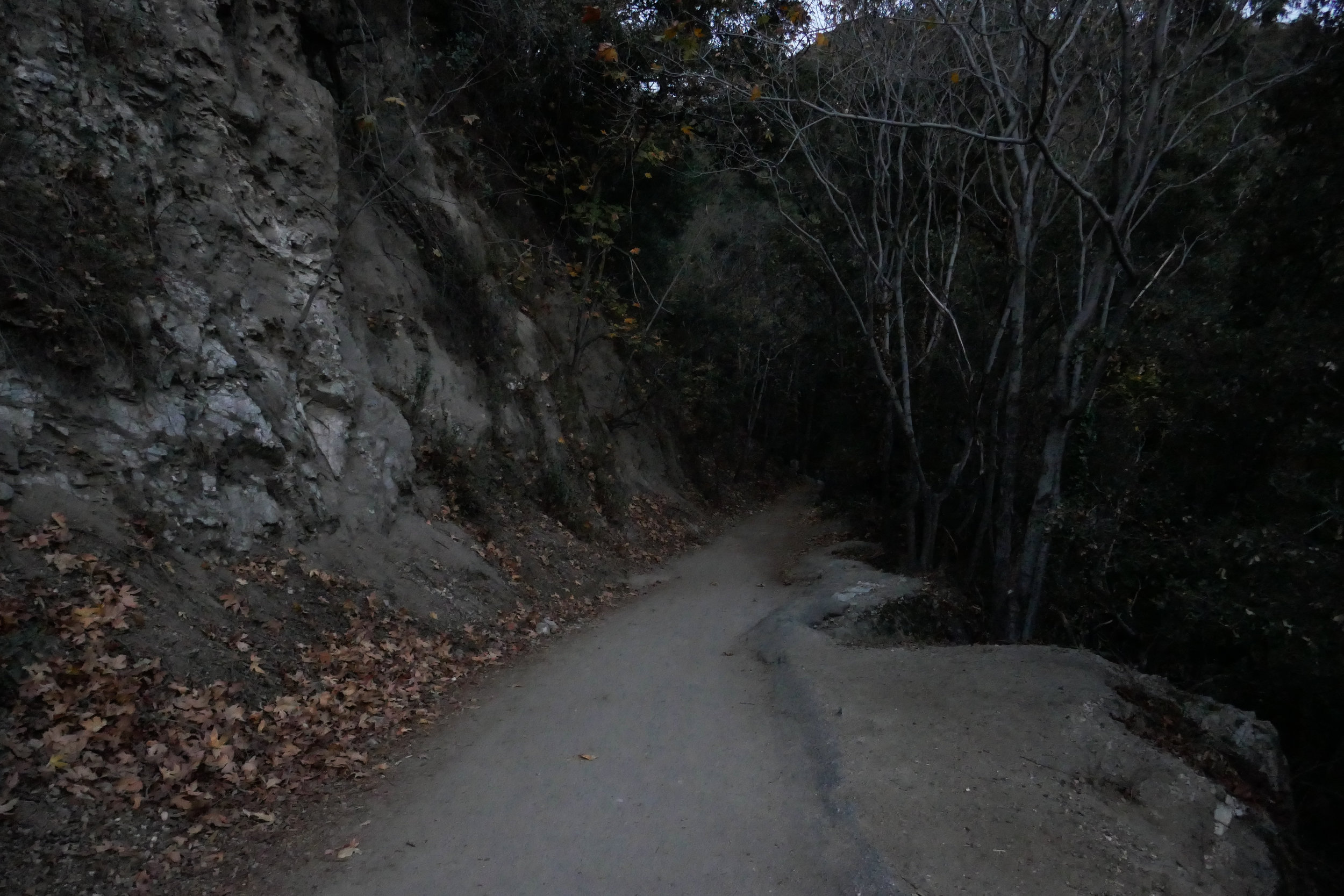 It was still dark when we headed into the canyon along the paved road.