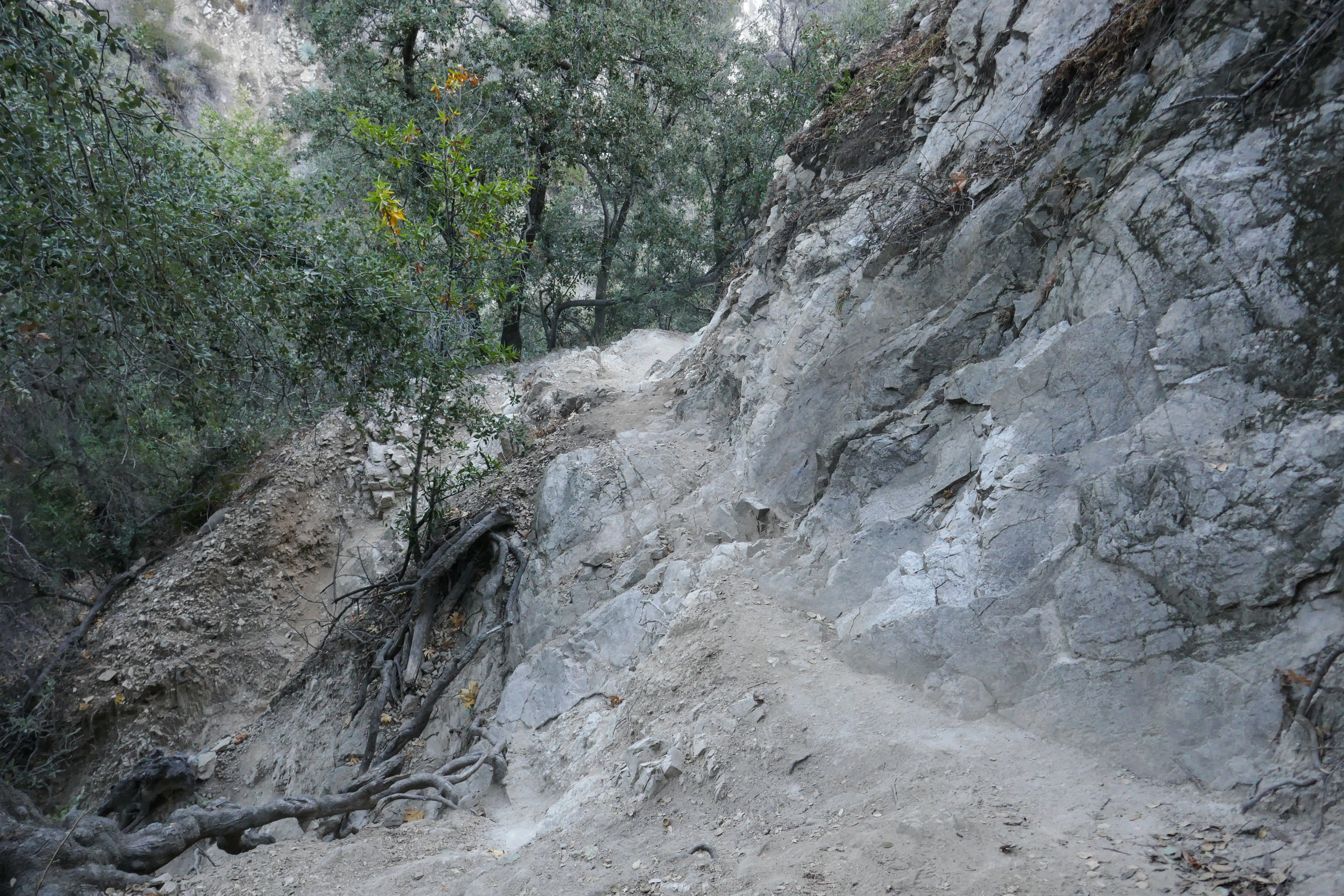Another photo of the trail where you have to watch your step.