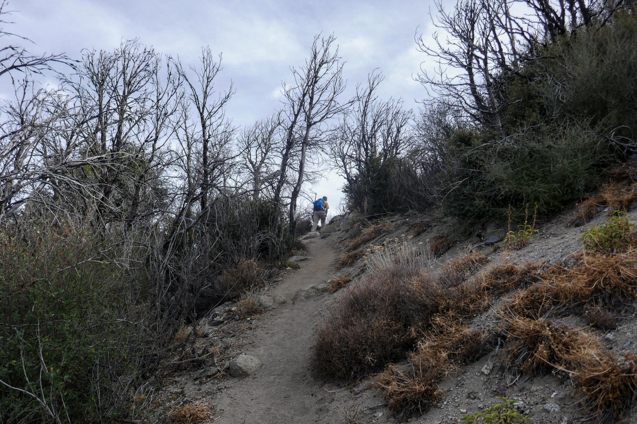 Climbing up the steep slope to San Gabriel Peak.