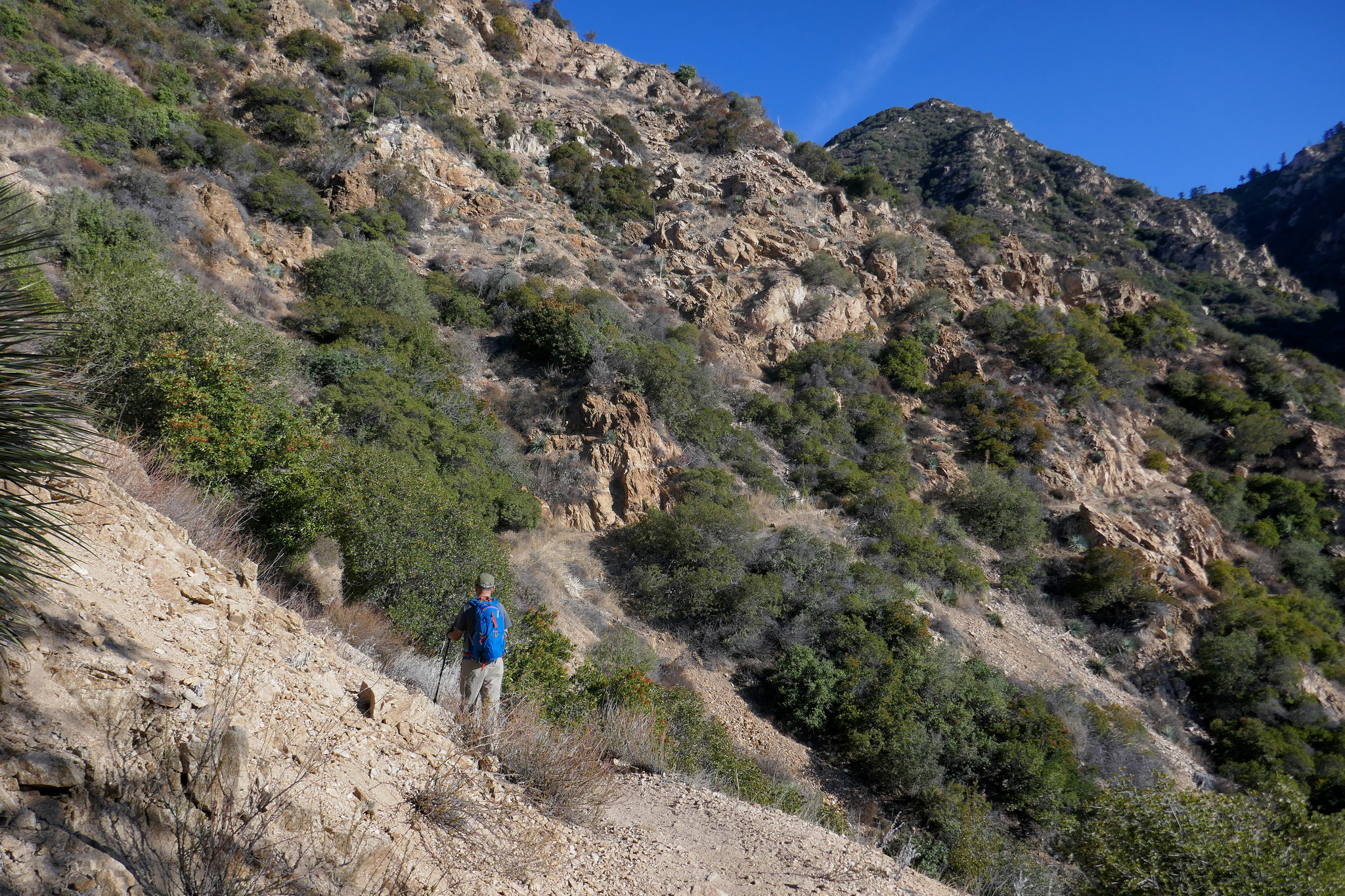 Heading up the Castle Canyon Trail to Inspiration Point.