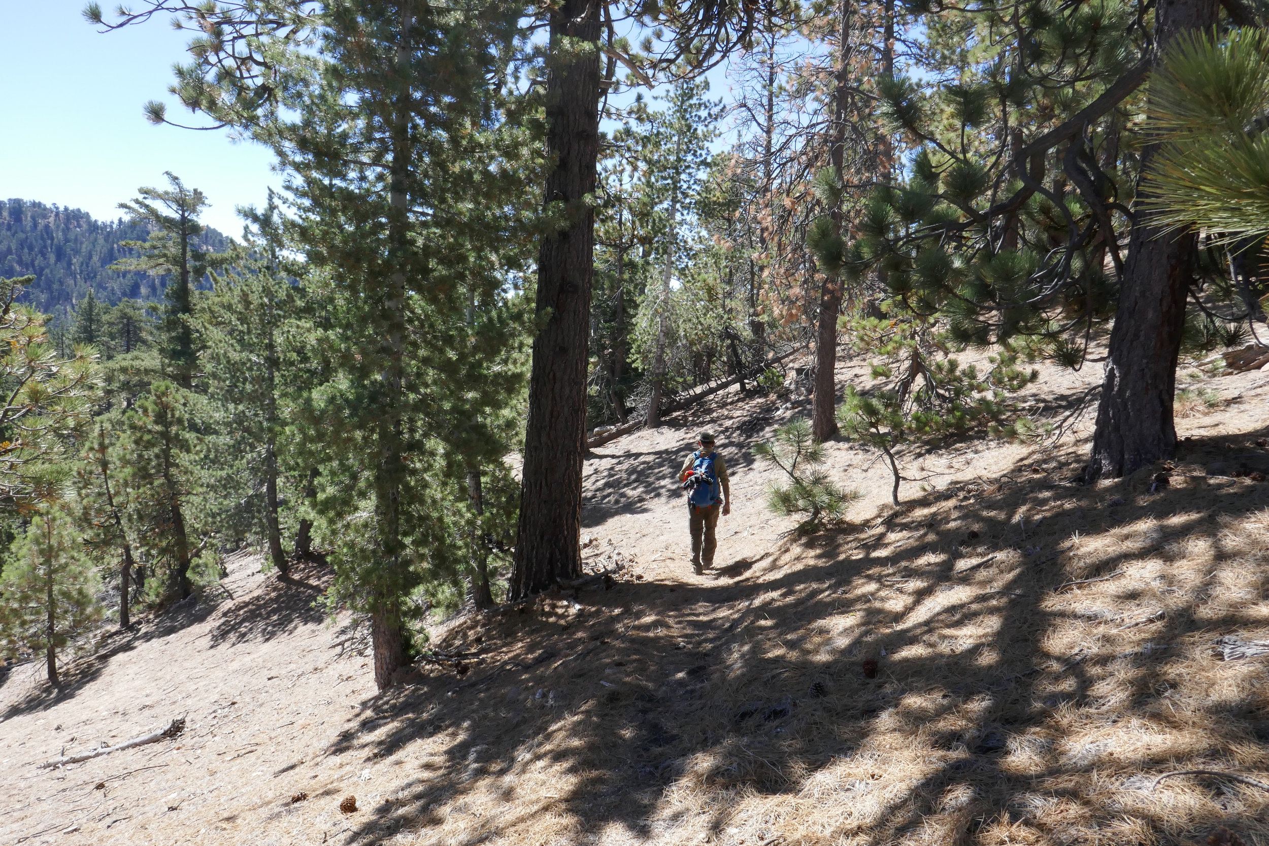 The trail turns southwest as it wraps around the mountain and finally disappears.