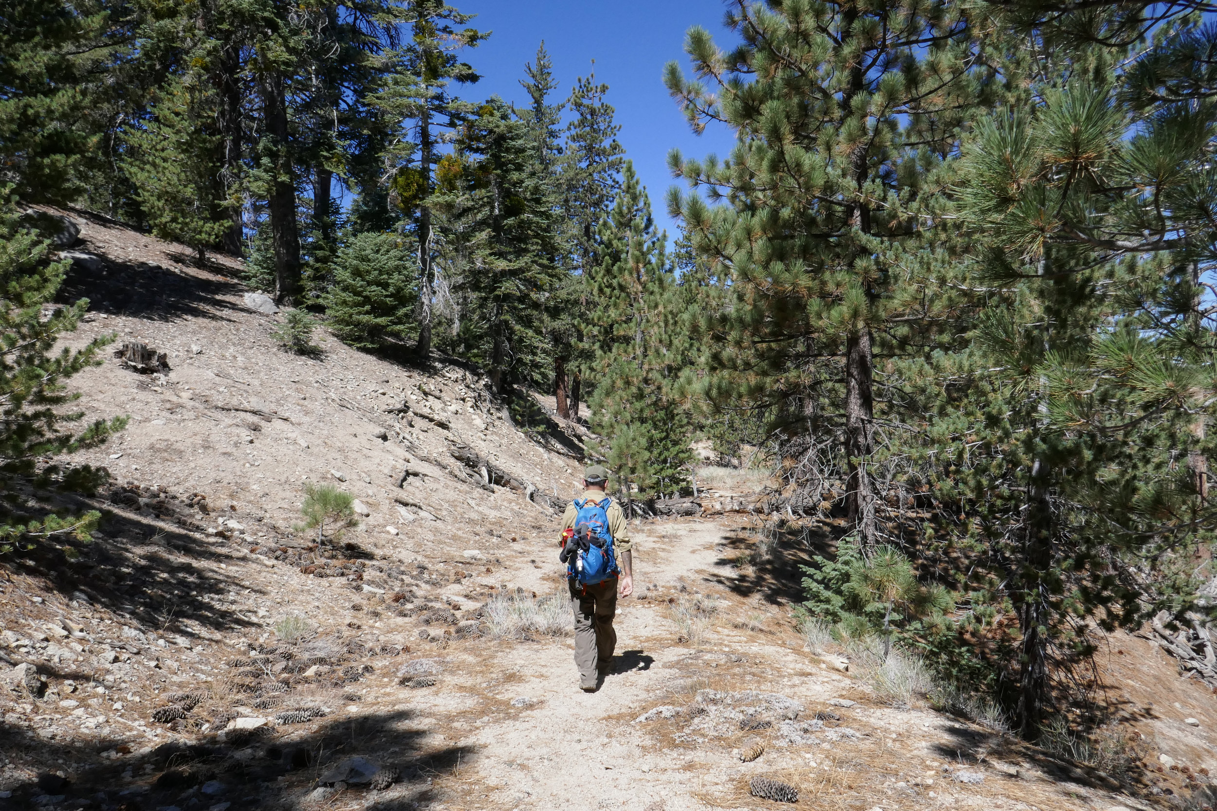 We take one more side trip before getting back on the trail leading to the parking area. It's already close to 11 am and we are hungry for lunch, so we decided to explore it another time.