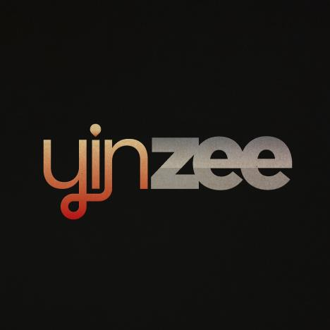 Company:  Yinzee.com   Industry:   Online
