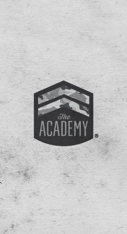 Company:  The Academy   Industry:   Internet Startup