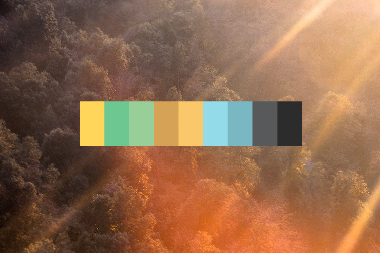 Go towards a warmer color palette with accent cool colors.