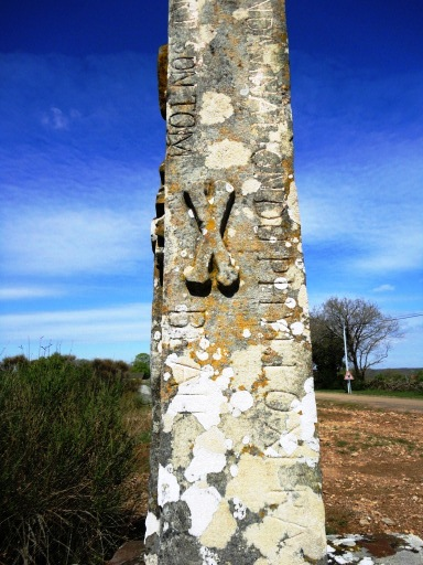 The Great French Wine Blight - The French countryside is dotted with Phylloxera crosses. Since nothing else appeared to stop its inexorable march, some viticulteurs turned to religion in a desperate attempt to rid the vines of this plague.