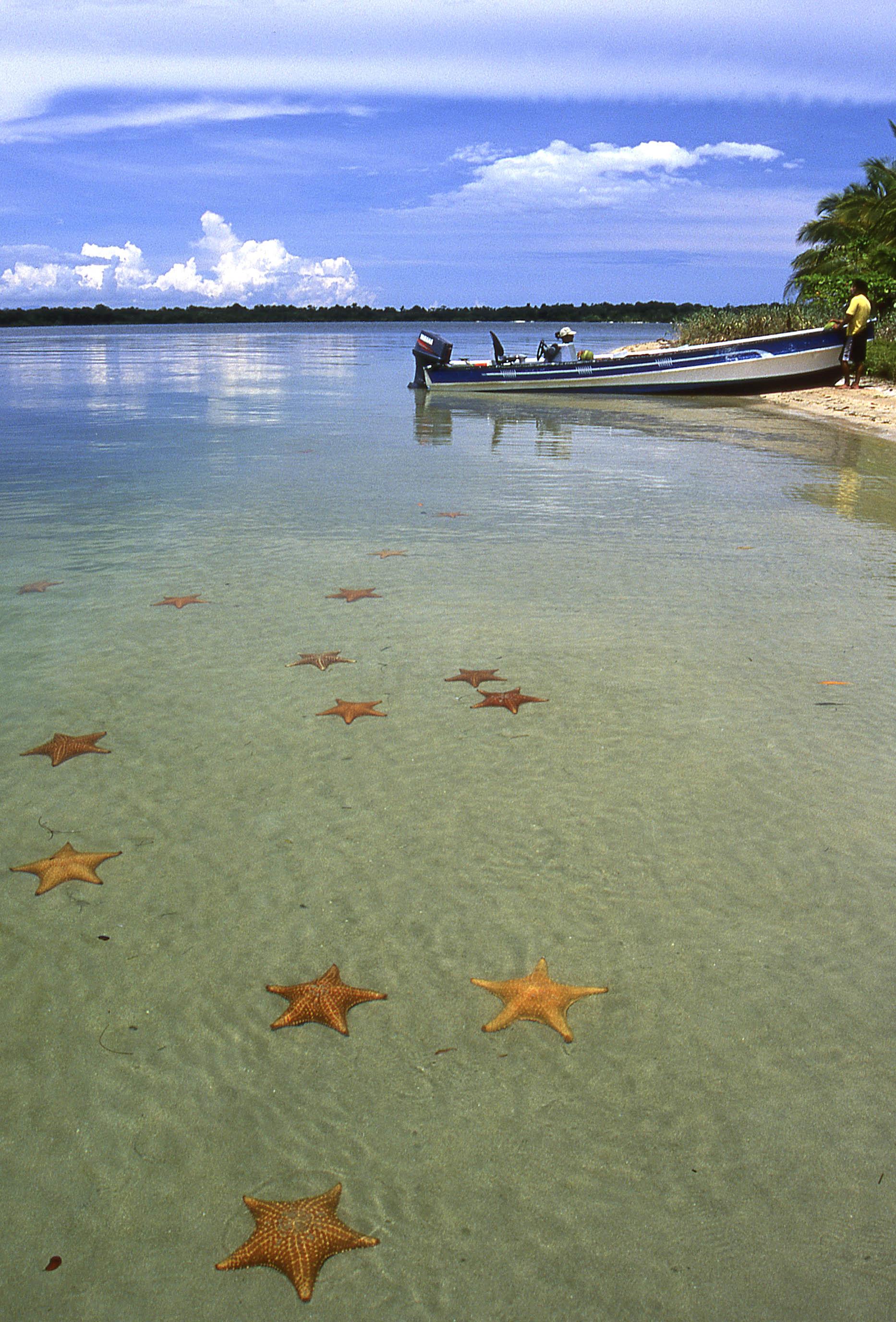 Panama2VMP.jpg
