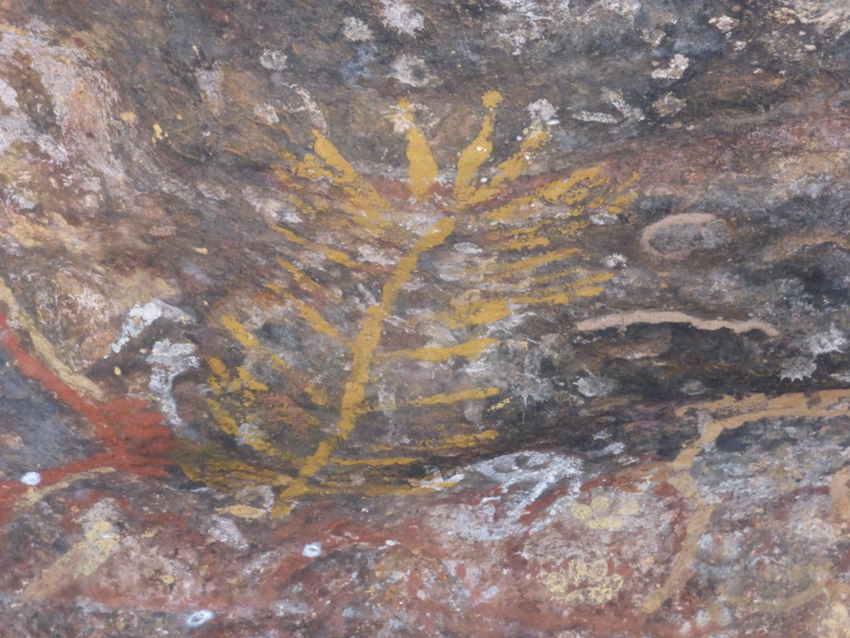 These are ancient drawings that were done by the Anangu to hep pass knowledge down from generation to generation.