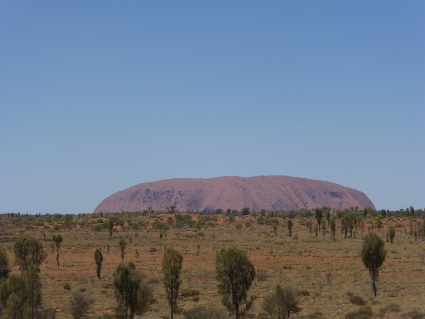 Uluru from the top of a camel.