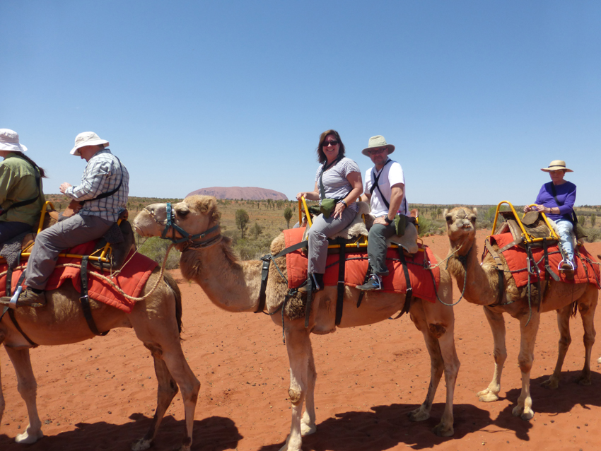 Annie & Michael on the top of a camel.