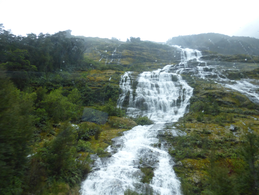 Once we got to Milford Sound, we got on a two-hour boat tour of this amazing part of the world. On the up side, the rain created literally hundreds of temporary waterfalls that would otherwise not be visible. We'll let you figure out the downside.