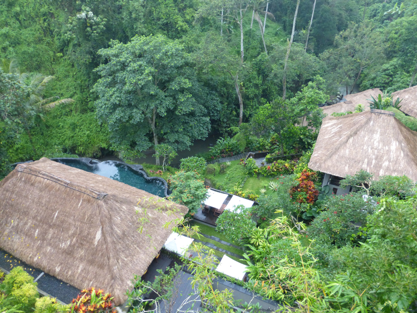 We've stayed in two different parts of the island. The first – Maya Ubud Resort & Spa – was in the middle of the jungle. It was wildly beautiful and so peaceful. We saw lots of frogs, lizards and even a couple of snakes.