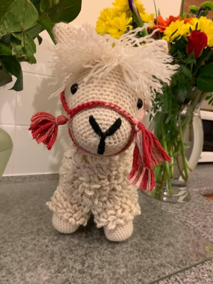 Crochet llama by Kirsten F