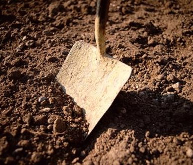 shovel in dirt.jpg