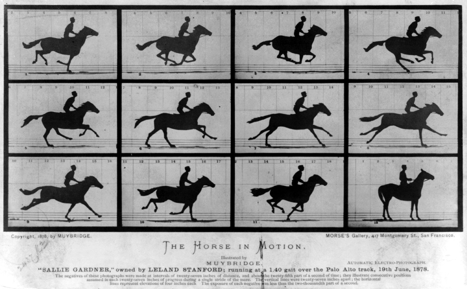 Early high speed photography required a manipulation of conventional rules, like multiple cameras being triggered in sequence in this 1878 collection.