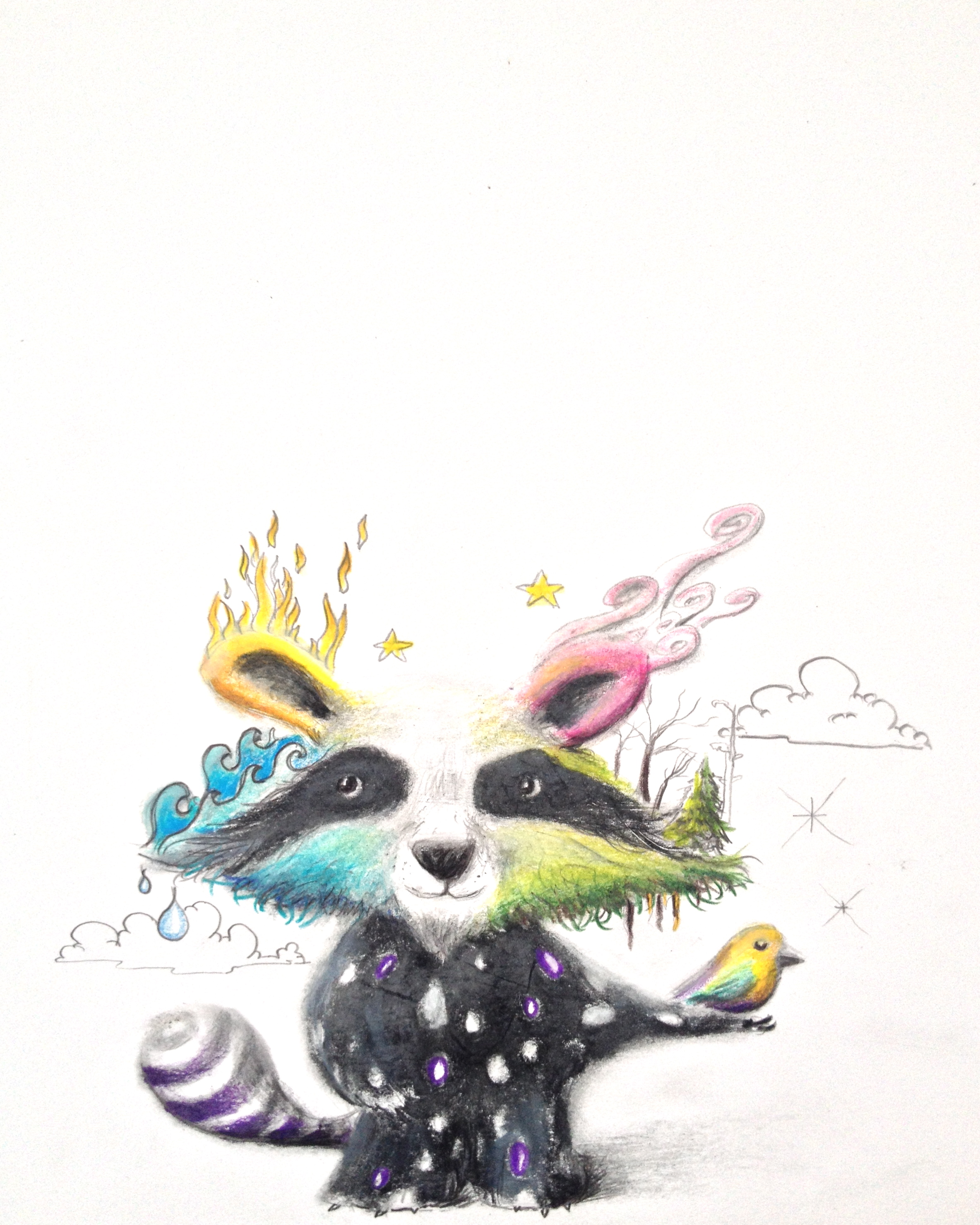 """Elemental Raccoon""  8.5""x11"" colored pencil on paper"