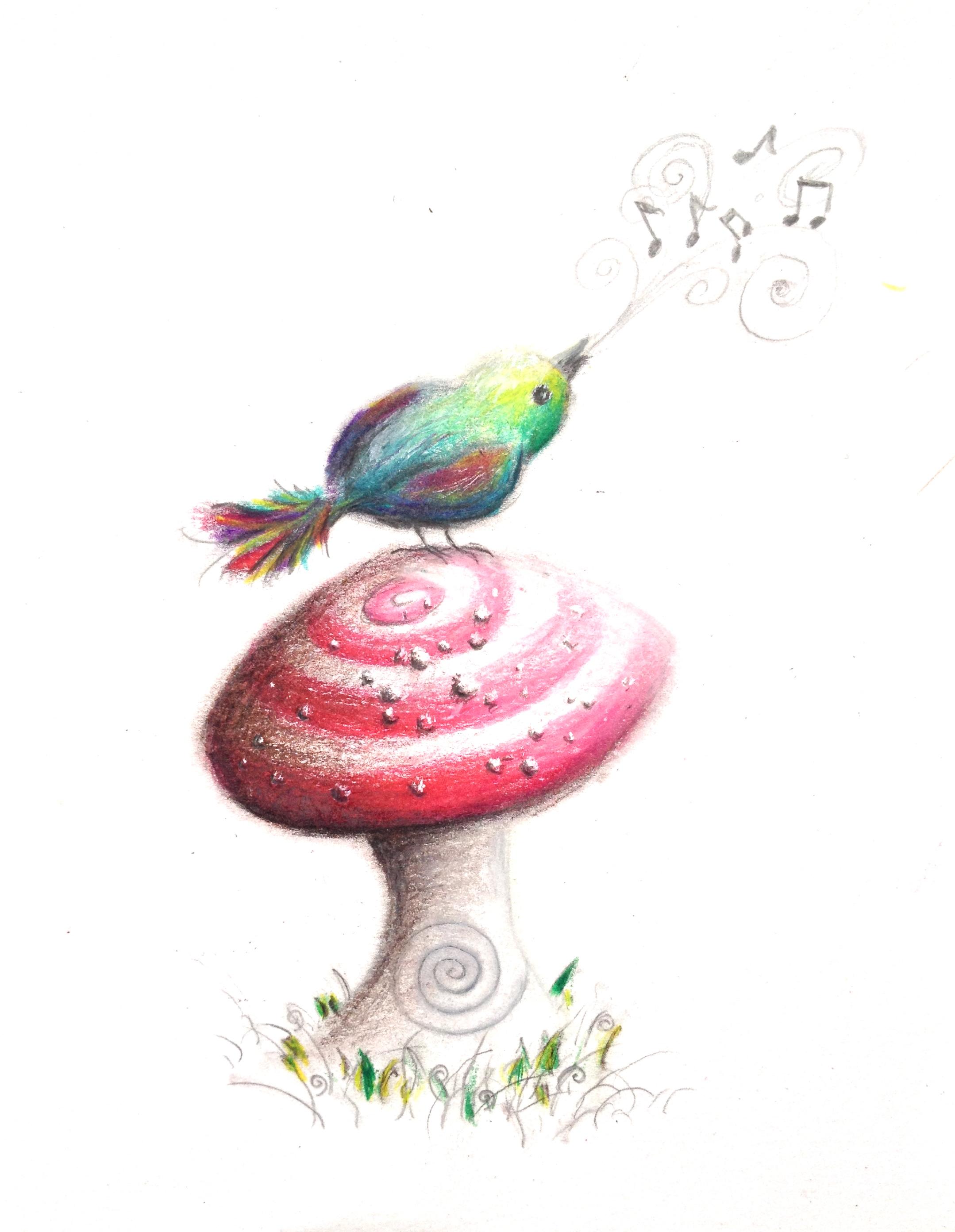 """""""Schroom Tune""""   4.75""""x 6.25"""" colored pencil on paper"""