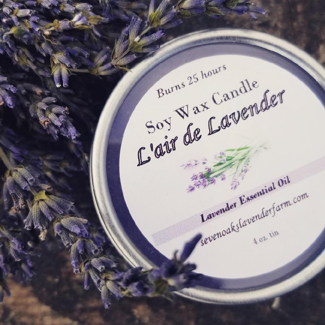 Lavender Blog — Seven Oaks Lavender Farm