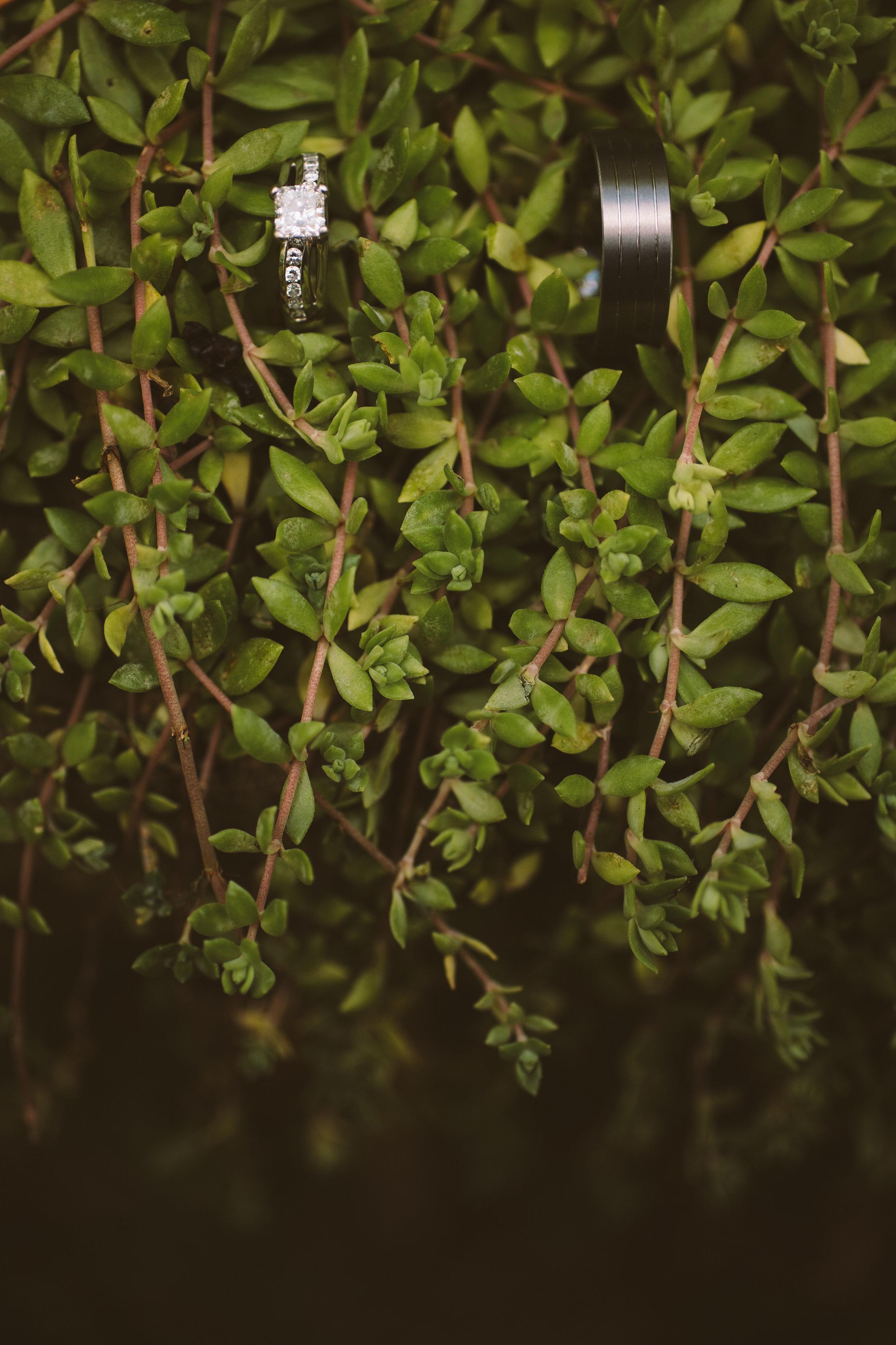 02_Garden-008.jpg