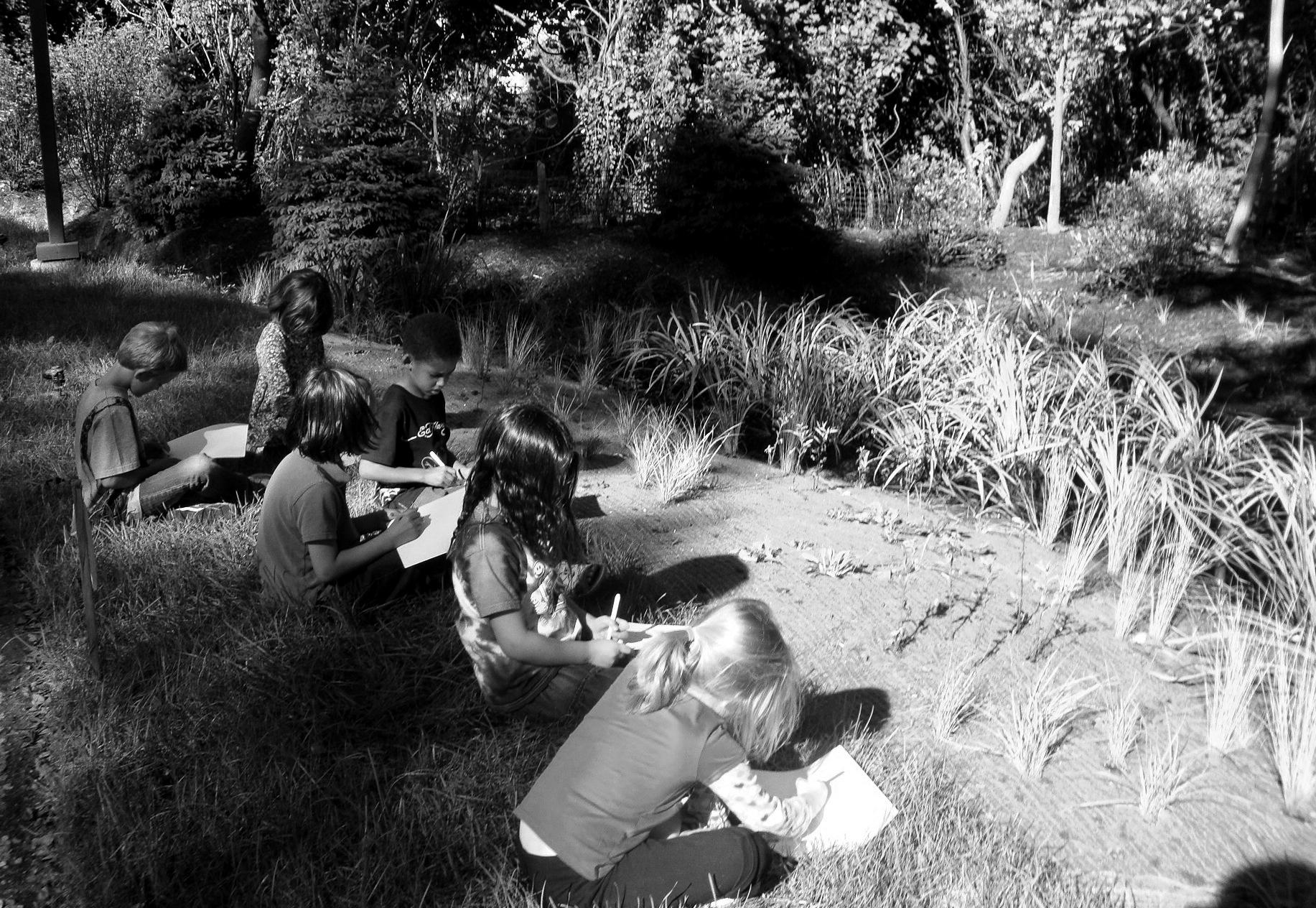 ITA 2012 sketching the garden gray.JPG