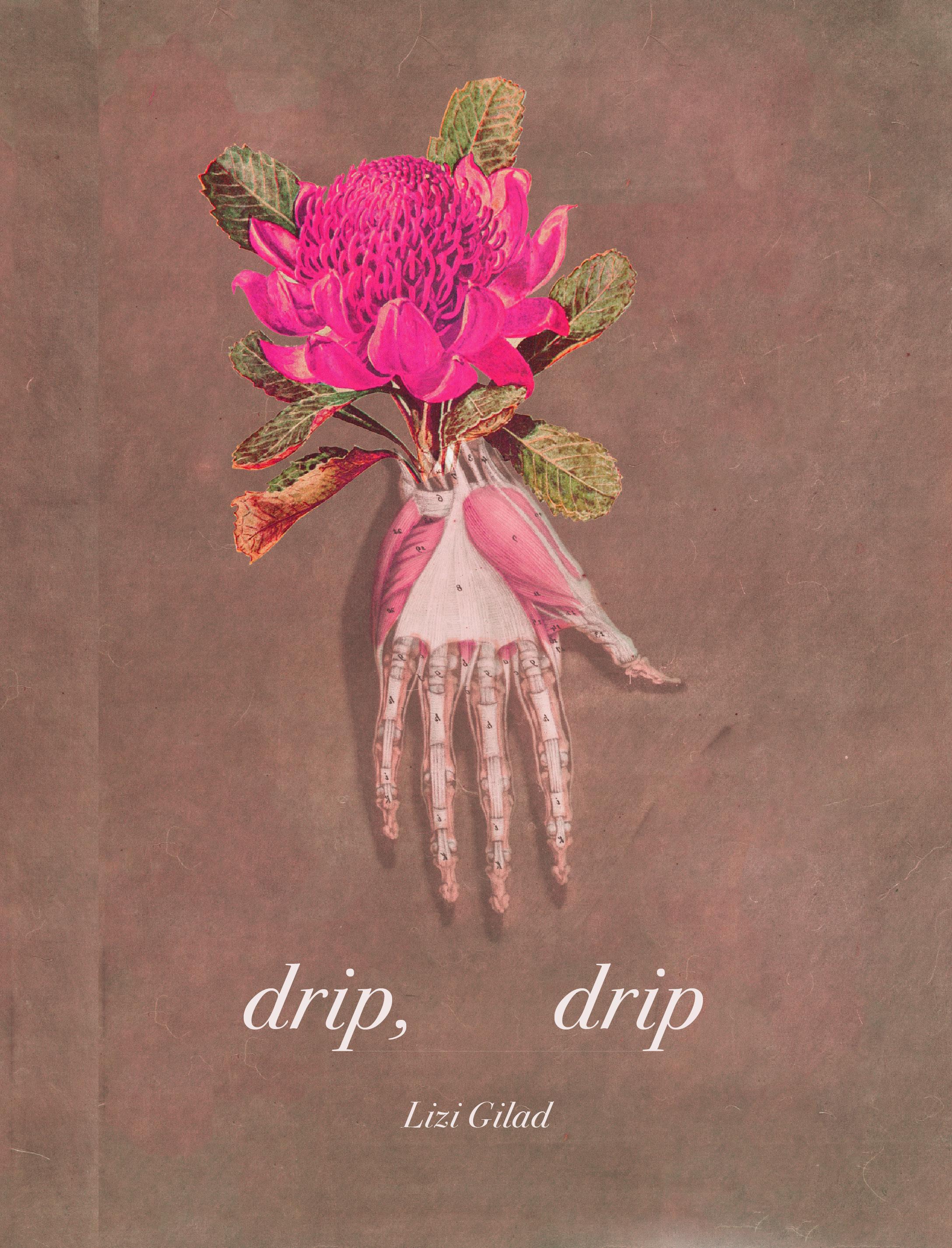 Cover art + interior design for Lizi Gilad's  drip, drip  ( BOAAT Press , 2016)   Read in full  here .