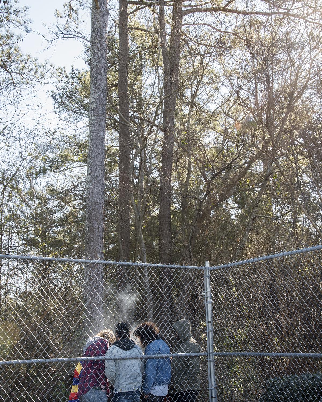 HFA fence.jpg