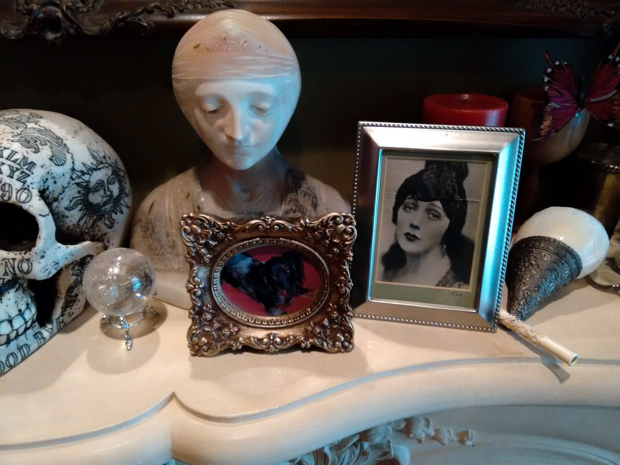 Framed photo of Patti's dog, surrounded by psychic ephemera.