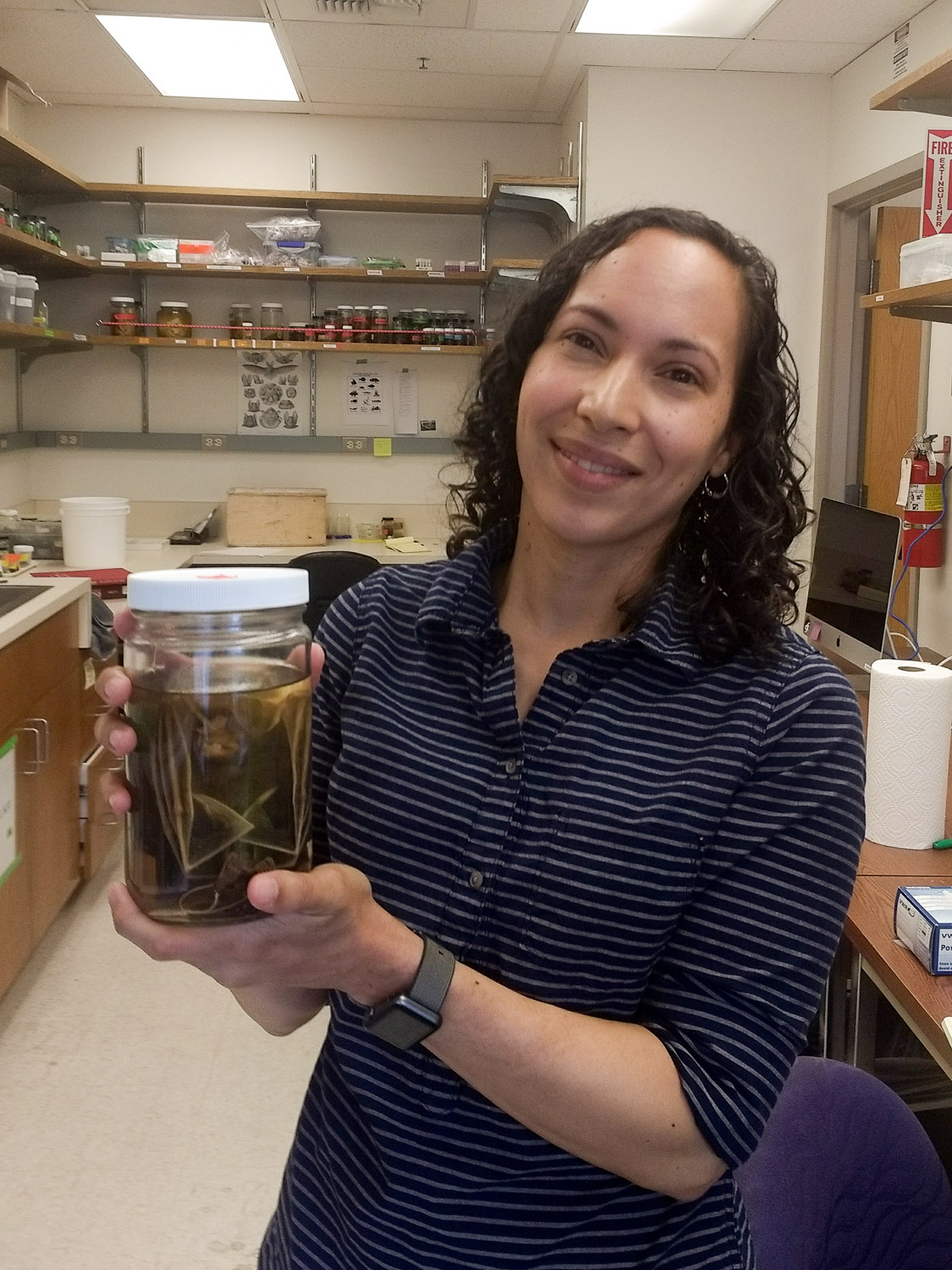 Sharlene Santana of the University of Washington, holding the preserved body of a Big-eared woolly bat