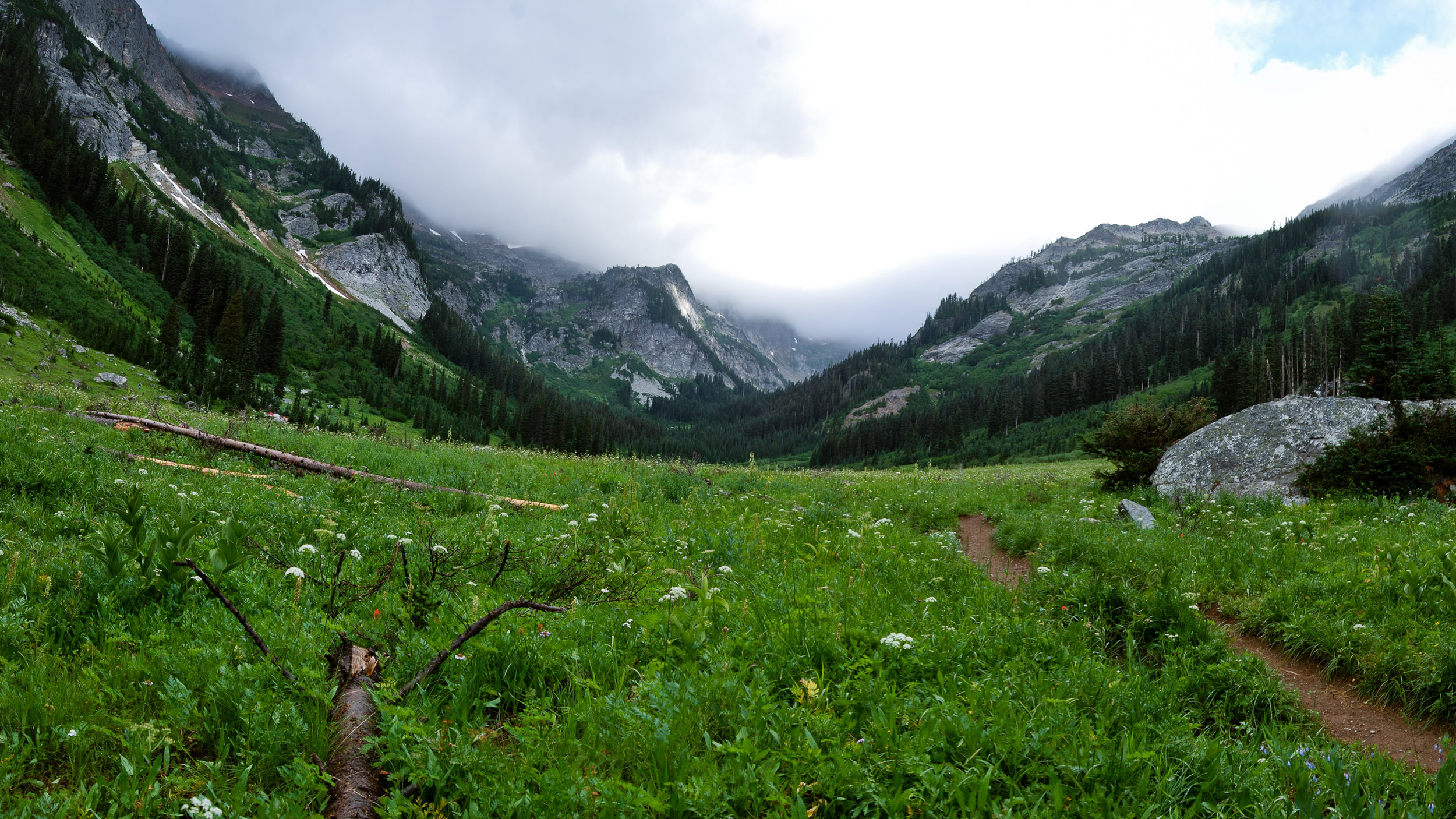 Meadow in the North Cascades near Holden Village.