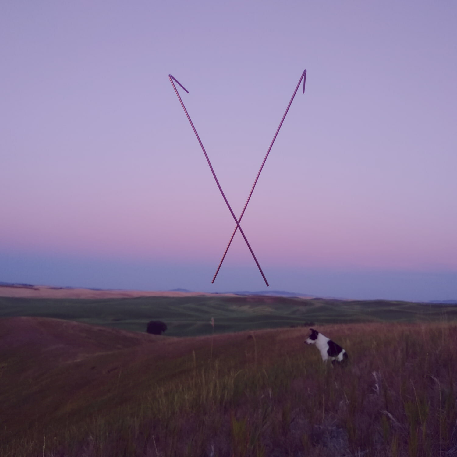 Smoot Hill, with 3D replicas of Kathy Emtman's witching rods superimposed