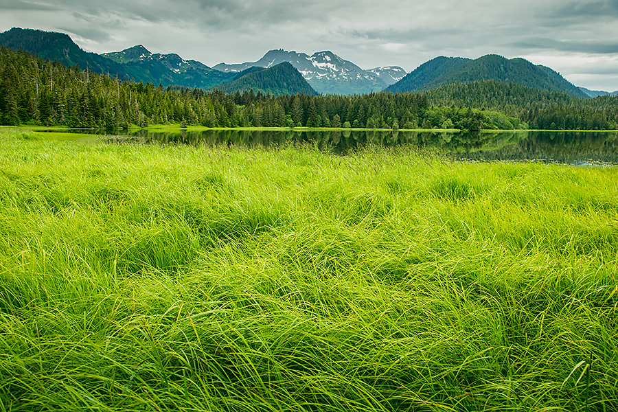 Alaska_04057.jpg