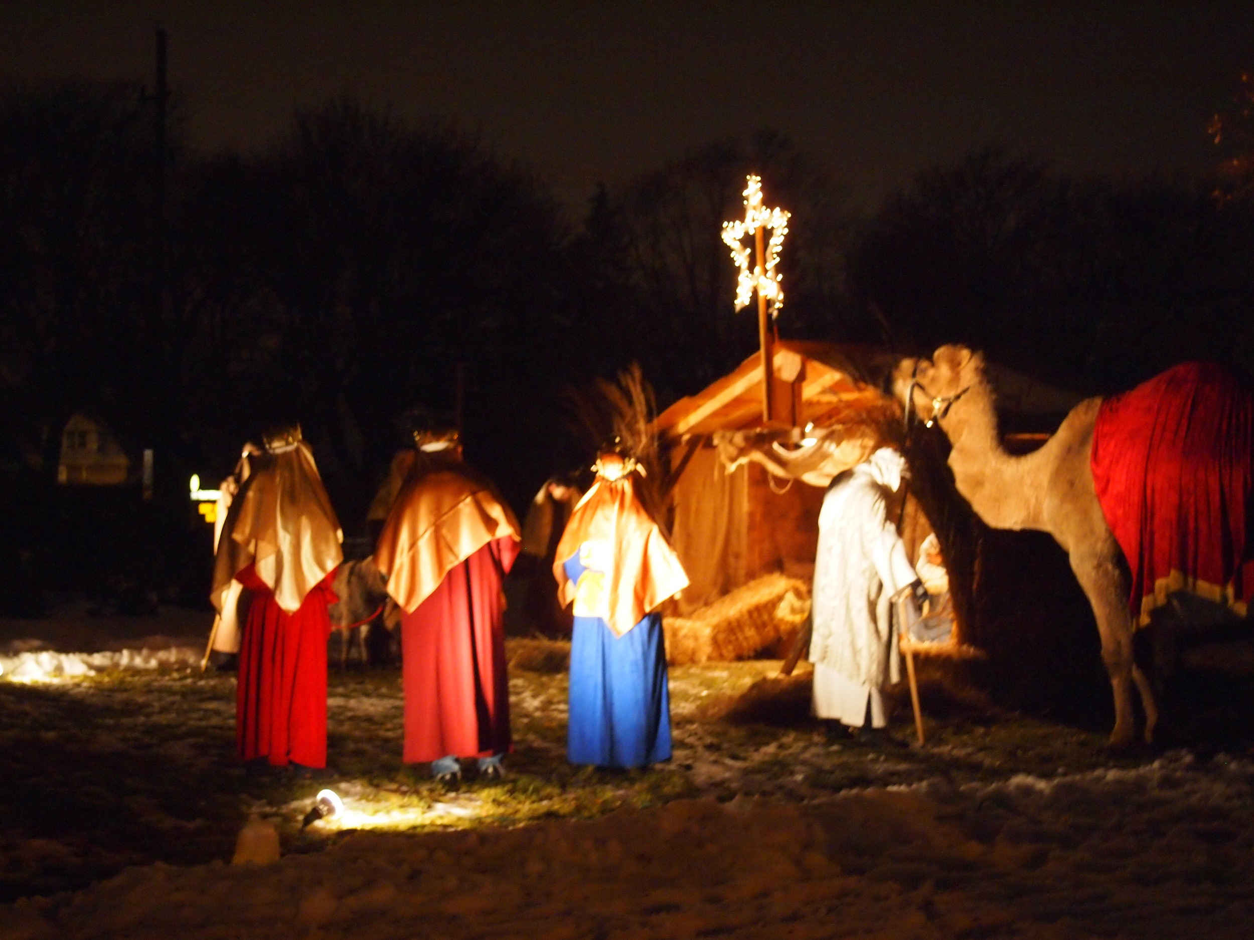 Presbyterian-Church-of-Paltine-Live-Nativity-2013-11.JPG