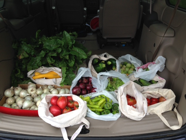 bounty for the food pantry
