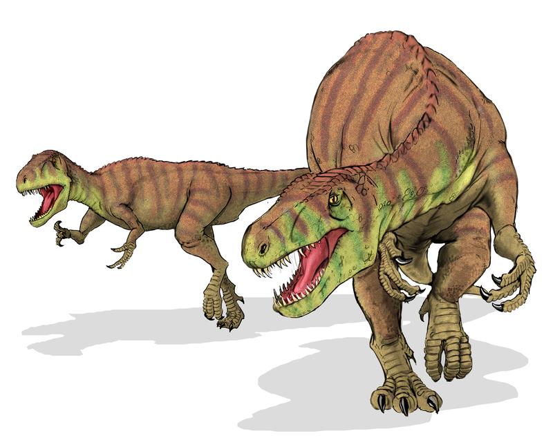"Shameosaurus  (a.k.a. ""Afrovenator abakensis dinosaur"" by Mariana Ruiz Villarreal LadyofHats - Licensed under Public Domain via Wikimedia Commons - http://commons.wikimedia.org/wiki/File:Afrovenator_abakensis_dinosaur.png#/medi /File:Afrovenator_abakensis_dinosaur.png)"