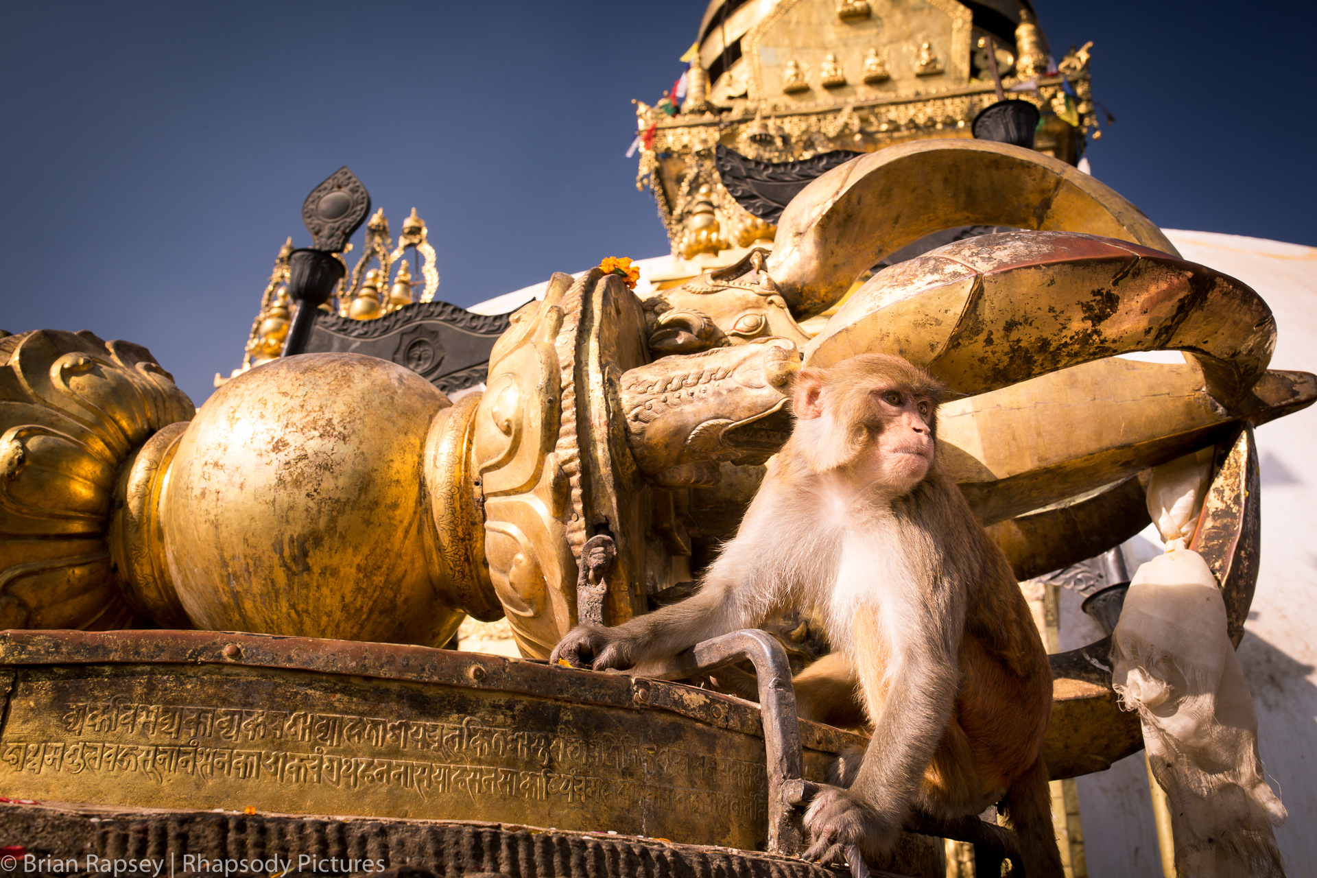 1611_17_Nepal_MonkeyTemple-20.jpg