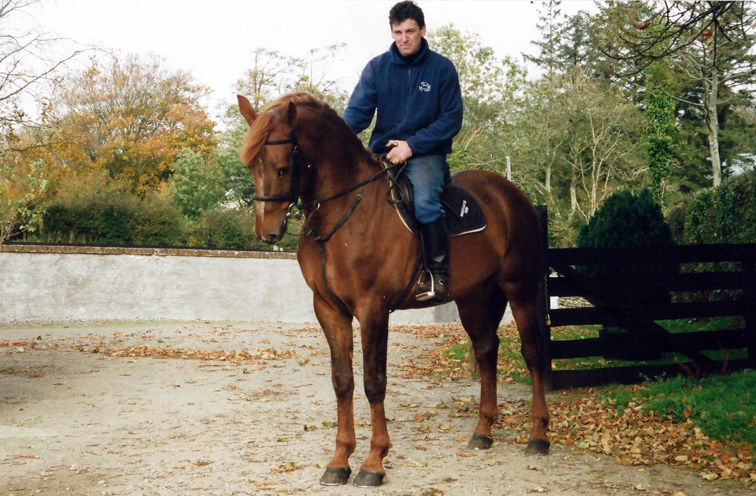 MF Horses - DScott GClover.jpg