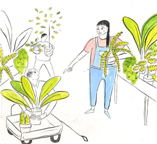 plantshopping3.jpg