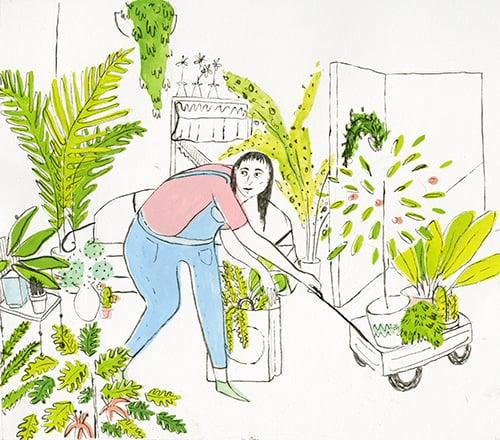 plantshopping4.jpg