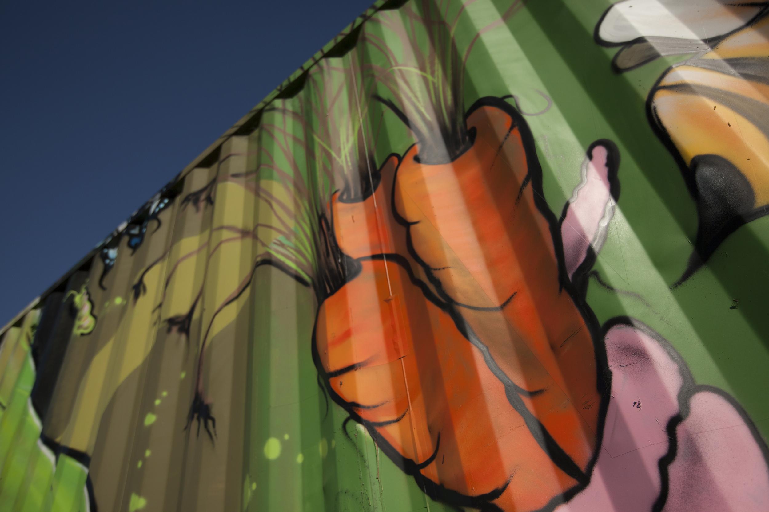 carrots net zero waste.jpg