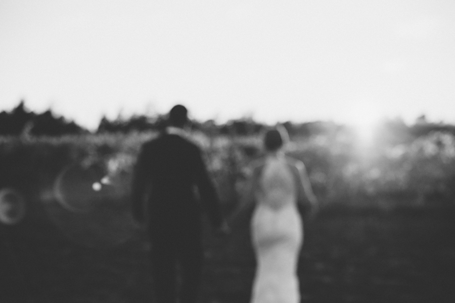 083Ontario Wedding Photography Darkhorse Winery .jpg