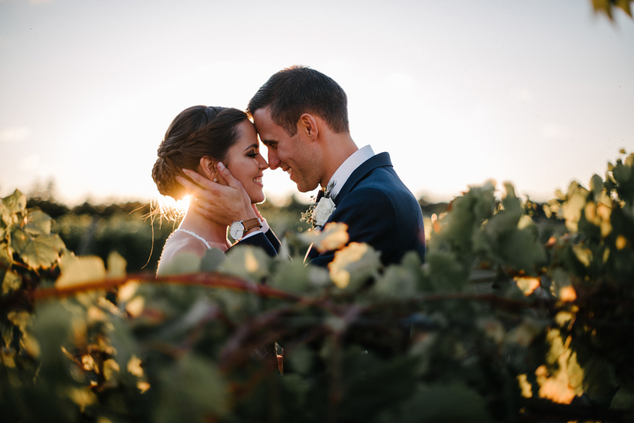 088Ontario Wedding Photography Darkhorse Winery .jpg