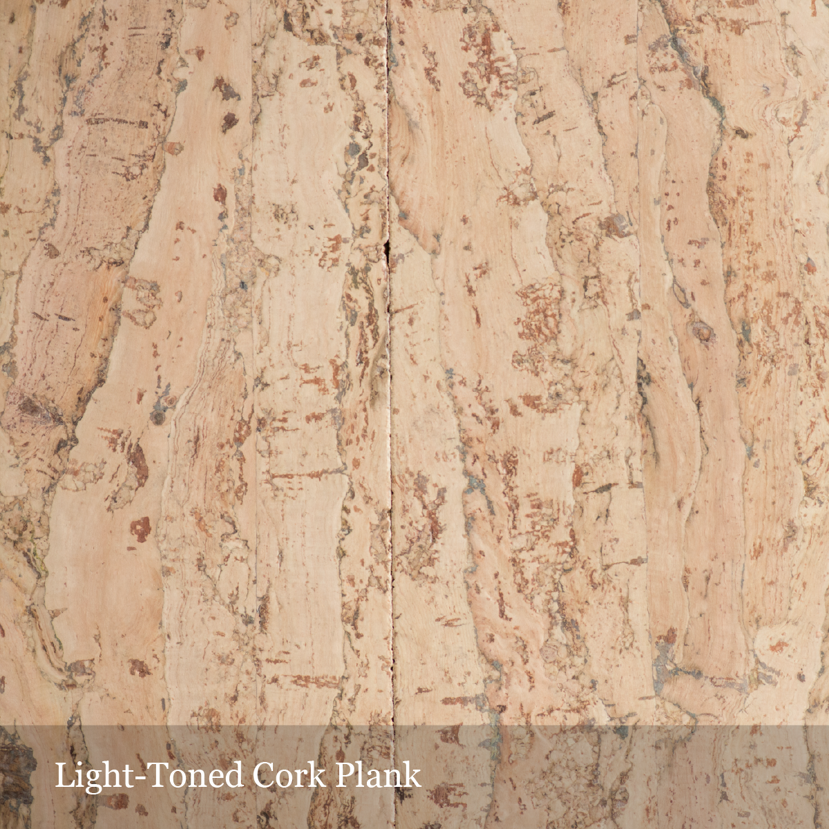 light-cork-plank-01.png