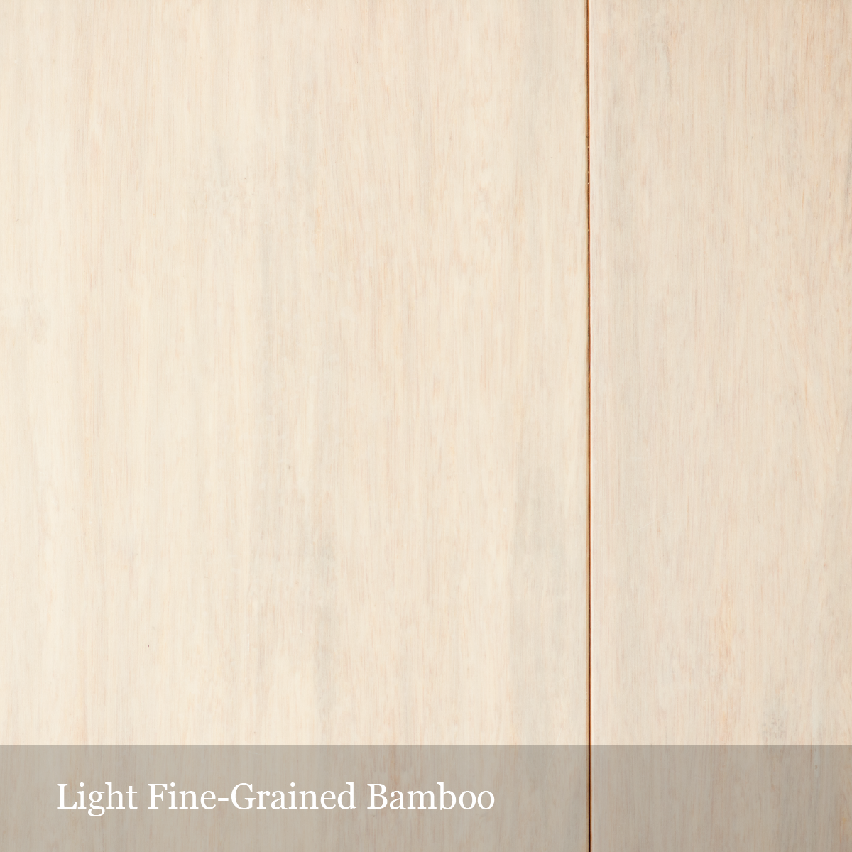 light-fine-bamboo-01.png