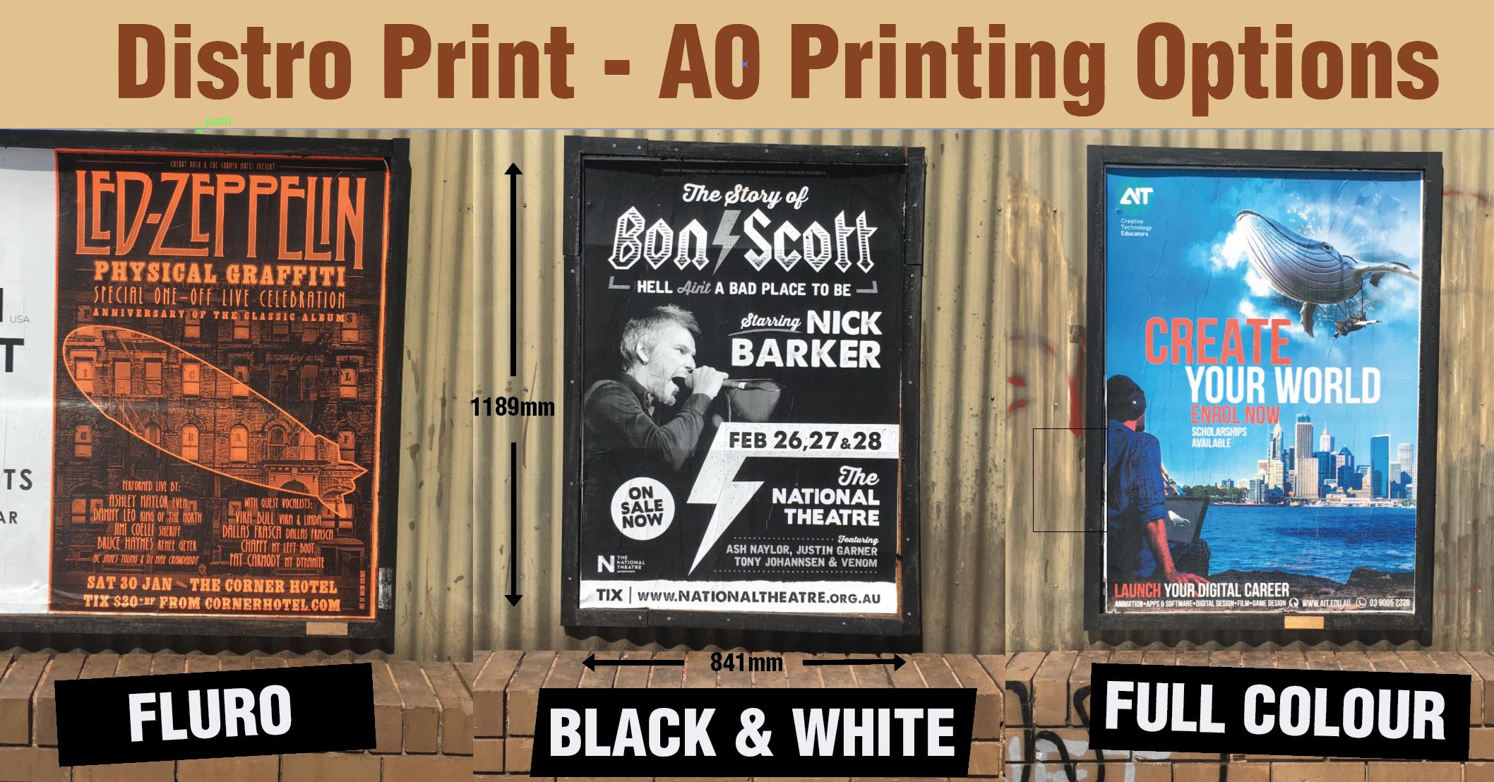 A0 Print Options