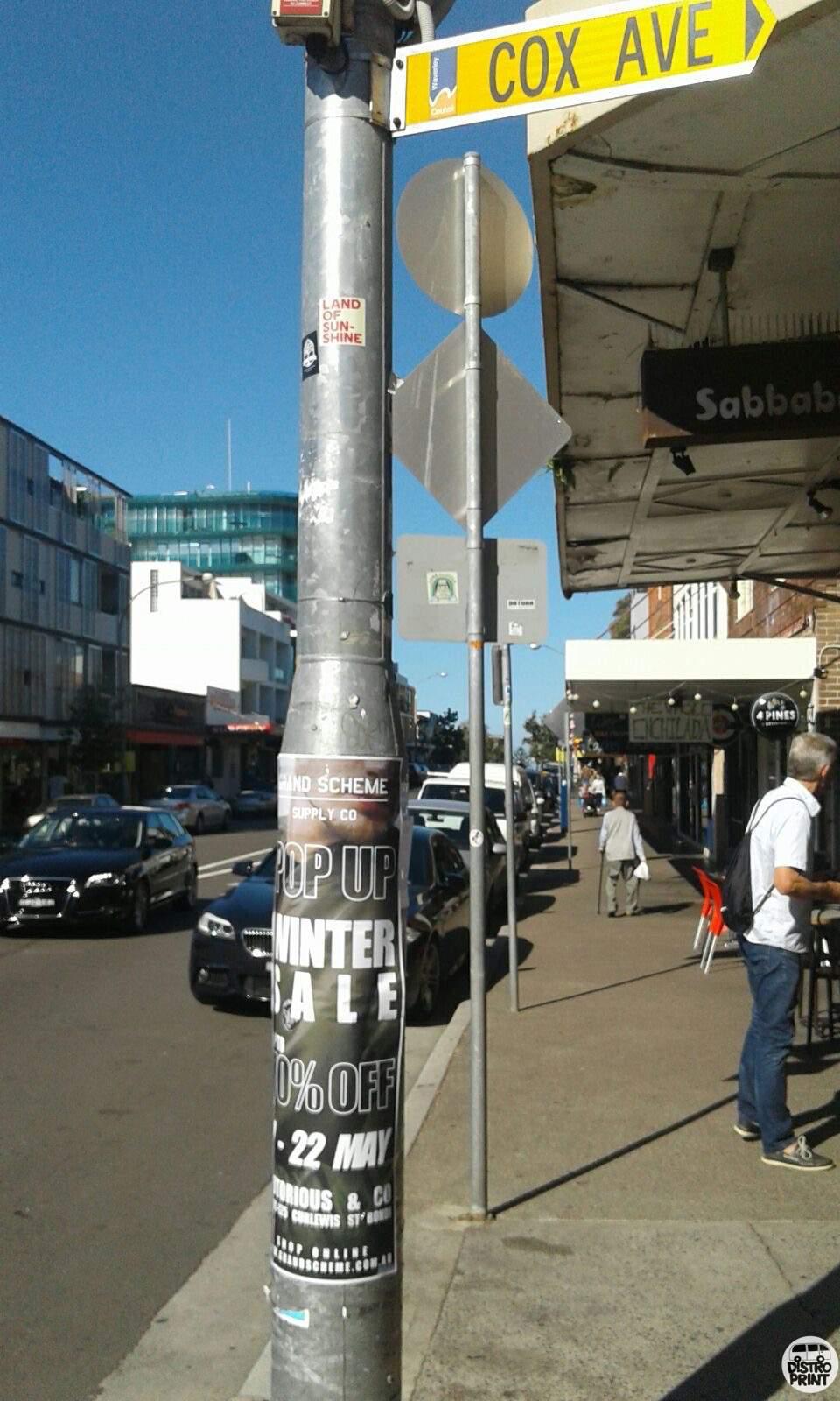 Distro Print Pole Posters7.jpg